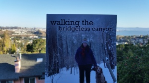 If you want to get a copy of this book, you can do it at this link:  http://www.amazon.com/Walking-Bridgeless-Canyon-Kathy-Baldock/dp/1619200287/ref=sr_1_1?ie=UTF8&qid=1414874423&sr=8-1&keywords=kathy+baldock